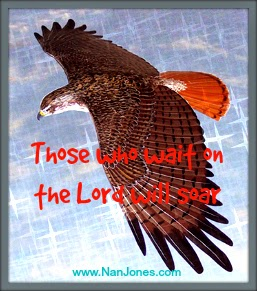 Scriptures of Encouragement ~ Feathers Like Burnished Wood