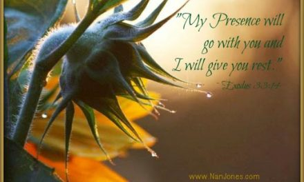 Finding God's Presence ~ The Gift of The Moments