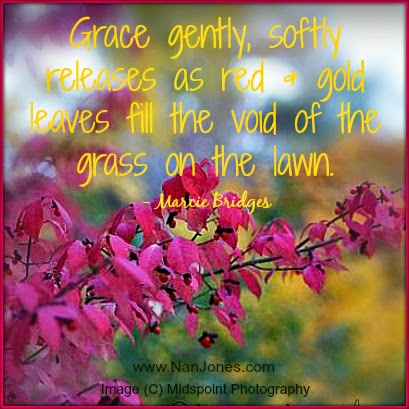 Finding God's Presence ~ Notes of Grace