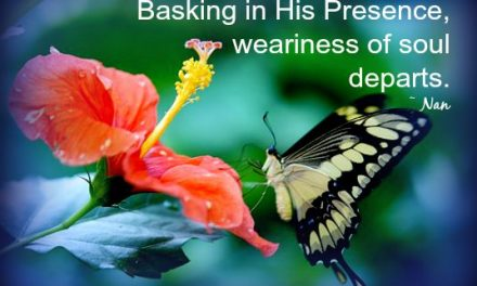 Finding God's Presence ~ Reflective Basking
