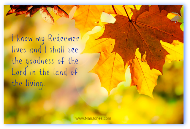 Finding God's Presence ~ The Resting Tree