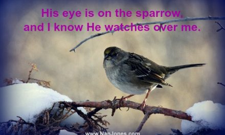 Finding God's Presence ~ Why Do the Sparrows Sing in Winter?