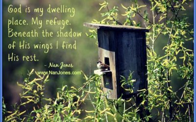 Finding God's Presence ~ Where is God When I Need to Find Home?