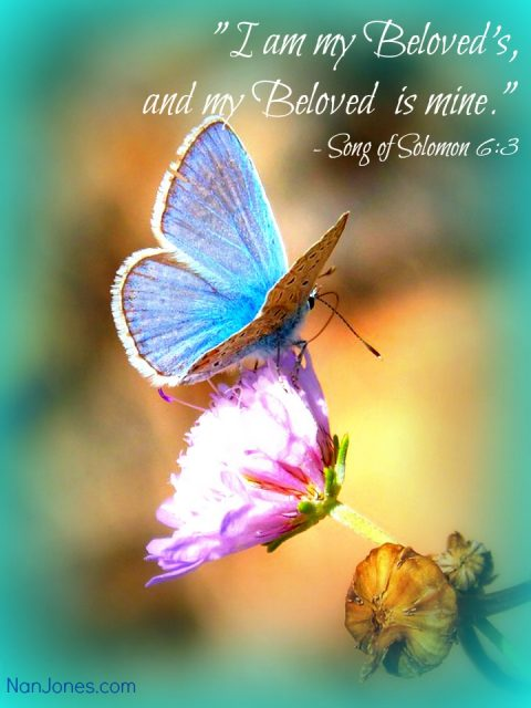 Beloved, look from your wilderness and behold your God.