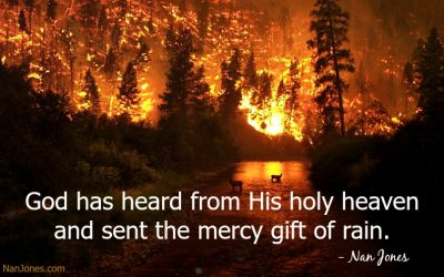 Amber Flames Bring Heartache and Fear. But God …