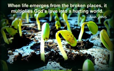The Fragrance of Life Emerges From the Broken Places
