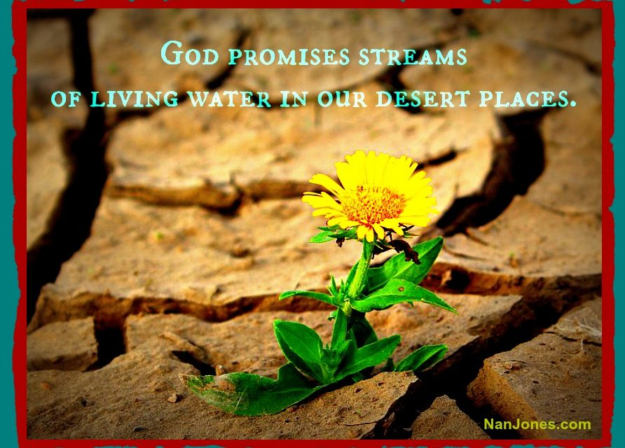 Finding God's Presence ~ Where is God When I Feel Insignificant?