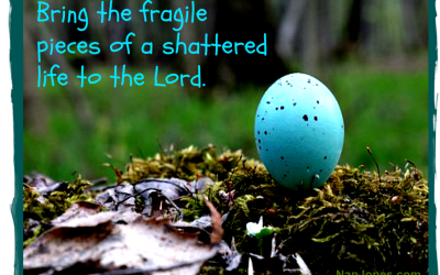 The Breaking of a Robin's Egg and Hope Secured