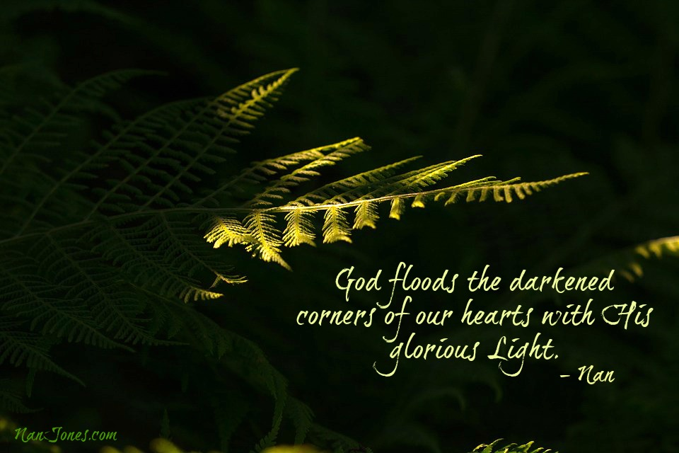 "For God said, ""Light shall shine out of darkness."""