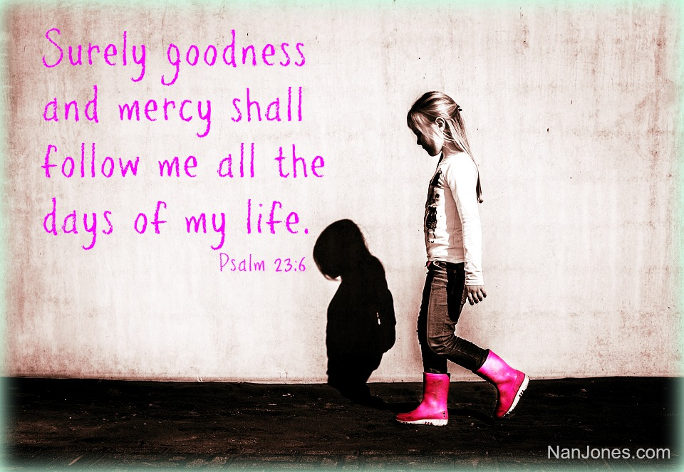 Could it be that as He goes before us, goodness and mercy follow as a shadow in the Light of His Presence?