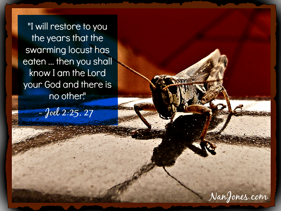 God can even use a locust, if He wants to.
