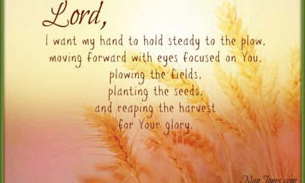 Finding God's Presence ~ A Prayer for Strength to Keep My Hand to the Plow