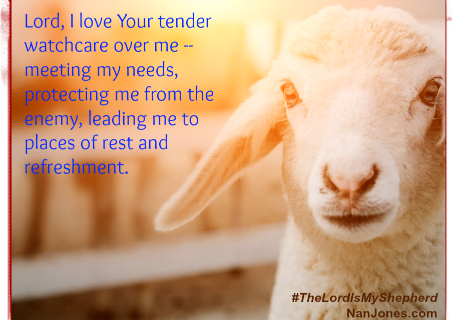 A Prayer to Face the Days Ahead as Our Shepherd Leads Us