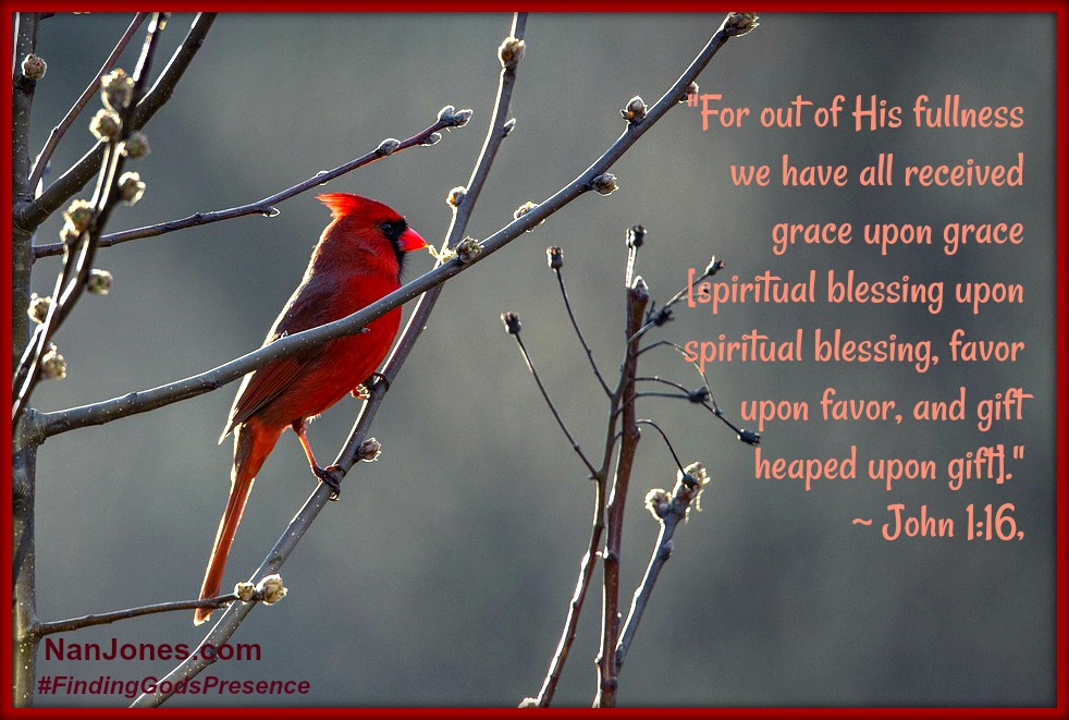 I can't help but think of God's grace when I see a cardinal on a snowy winter day.