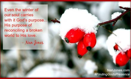 Finding God's Presence ~ In the Middle of a Thicket, Rose Hips Grew