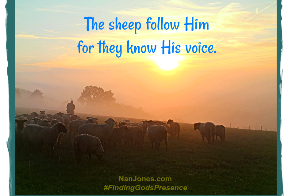 Finding God's Presence ~ Are You Questioning the Shepherd's Voice?