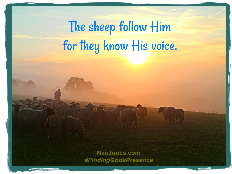 The Shepherd makes Himself and His will and His voice known to us.