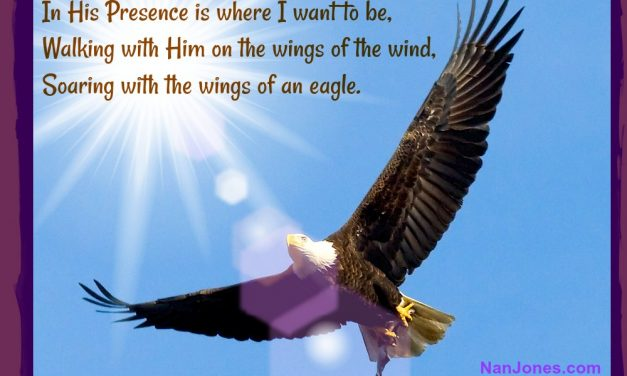 Finding God's Presence ~ Can We Really Soar on the Wings of An Eagle?