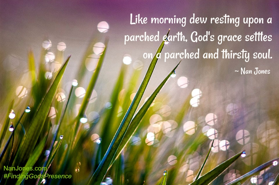 Finding God's Presence ~ The Juxtapositions Creating Dew, Grace, and Hope