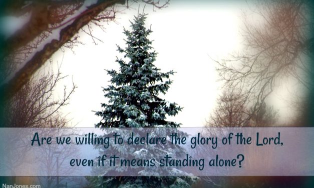 The Parable of One Solitary Tree