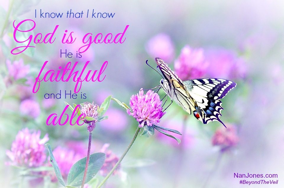 God's goodness is beyond description, it is greater than our understanding.
