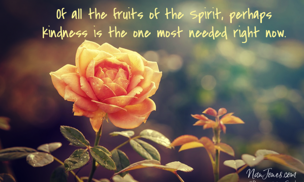 Prayer: Overflow With Kindness Fruit, But My Flesh is Rotten