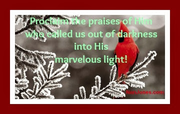 Scriptures of Christmas ~ Crimson Praise