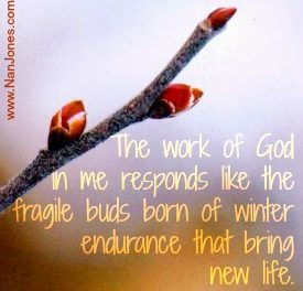 Scriptures of Encouragement ~ The Works of God
