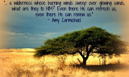 Finding God's Presence ~ Wilderness. A Place of Difficulty or Peace?