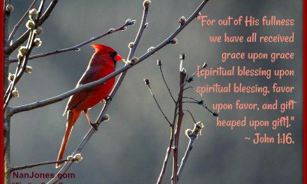 Finding God's Presence ~ In the Dim Light of Winter Sadness Lies Abundant Grace