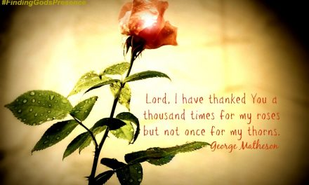 Finding God's Presence ~ Have You Thanked God For The Thorns? Me, Either! 'Til Now