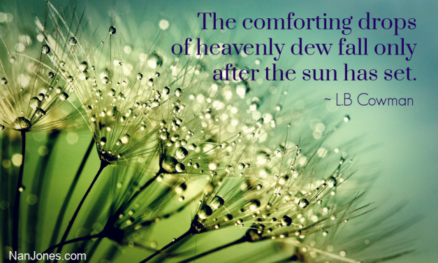 Morning Dew Refreshes the Earth Like  Grace Upon a Thirsty Soul