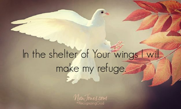Prayer: Hiding in the Shadow of His Wings, but Needing Mercy