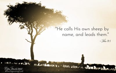 be Like a Sheep When You're Acting Like a Mule ~ A Prayer